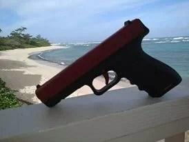 SIRT Hawaii