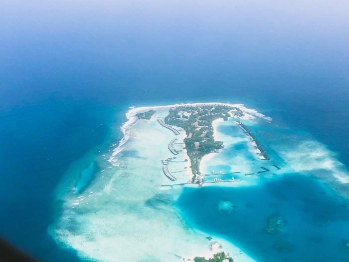Planète bleu maldives