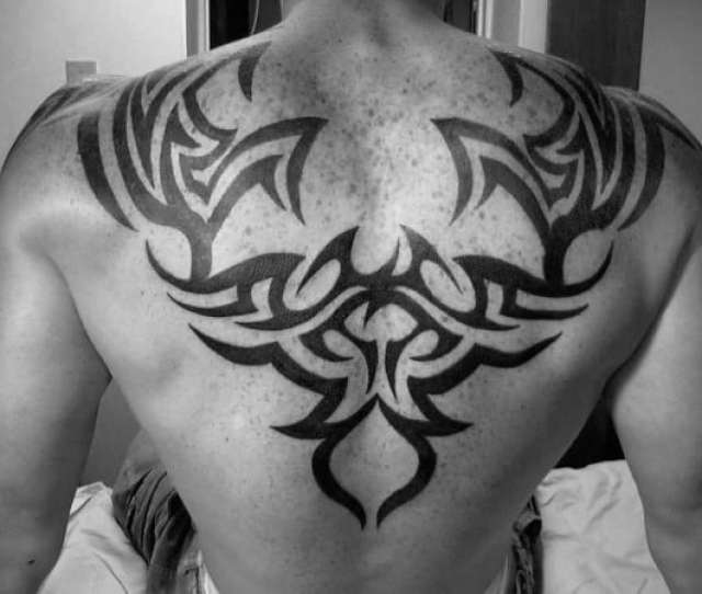 Tribal Tattoo Male Upper Back