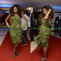 Photo Gallery: Check out Red Carpet Photos of Naija Top Celebrities at DKM Concert in Lagos