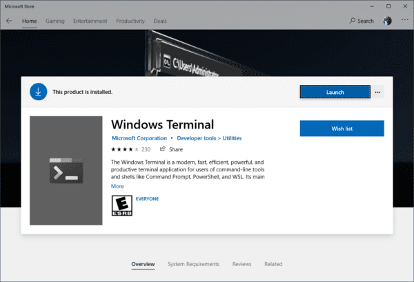 image 3 600x408 - Windows Terminal 1.0 Released
