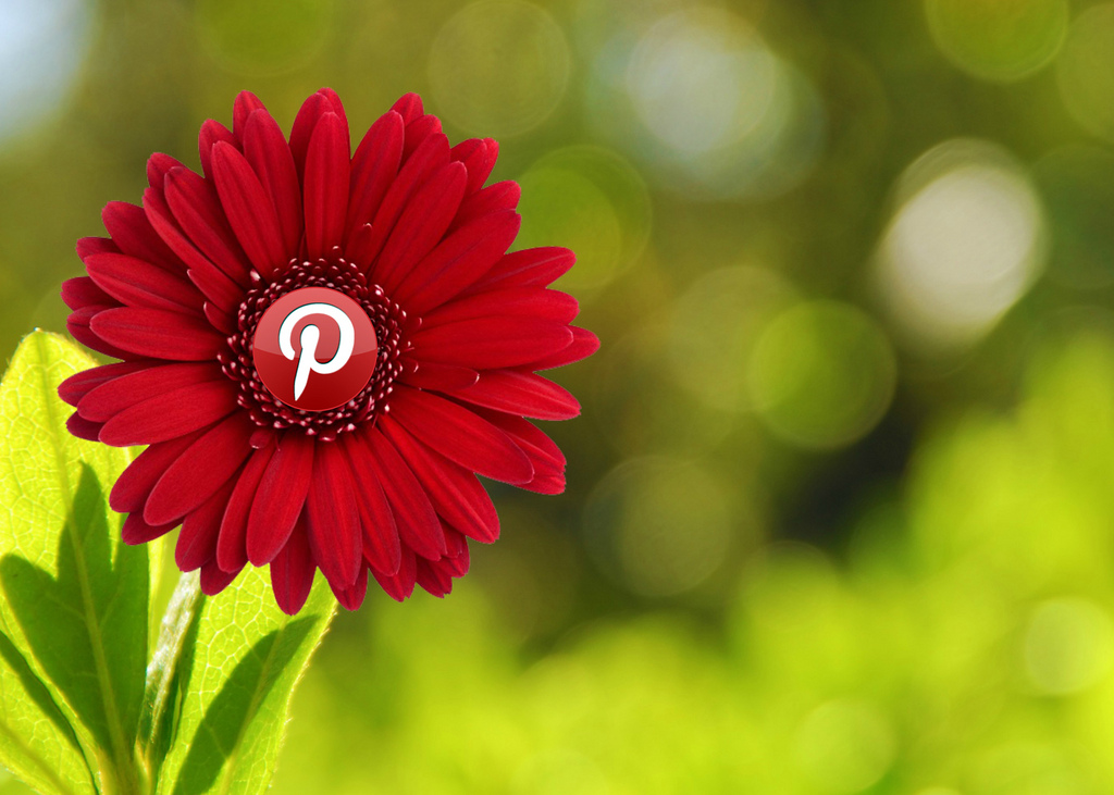 How To Use Pinterest For Restaurant Marketing: Your