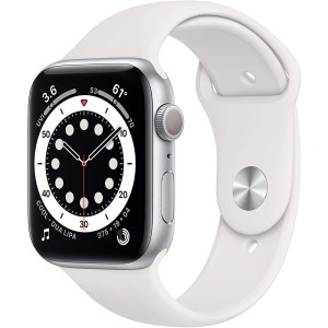 Apple Watch Series 6 Silver Sport Band_1