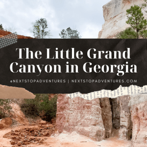 Exploring the Little Grand Canyon in Georgia