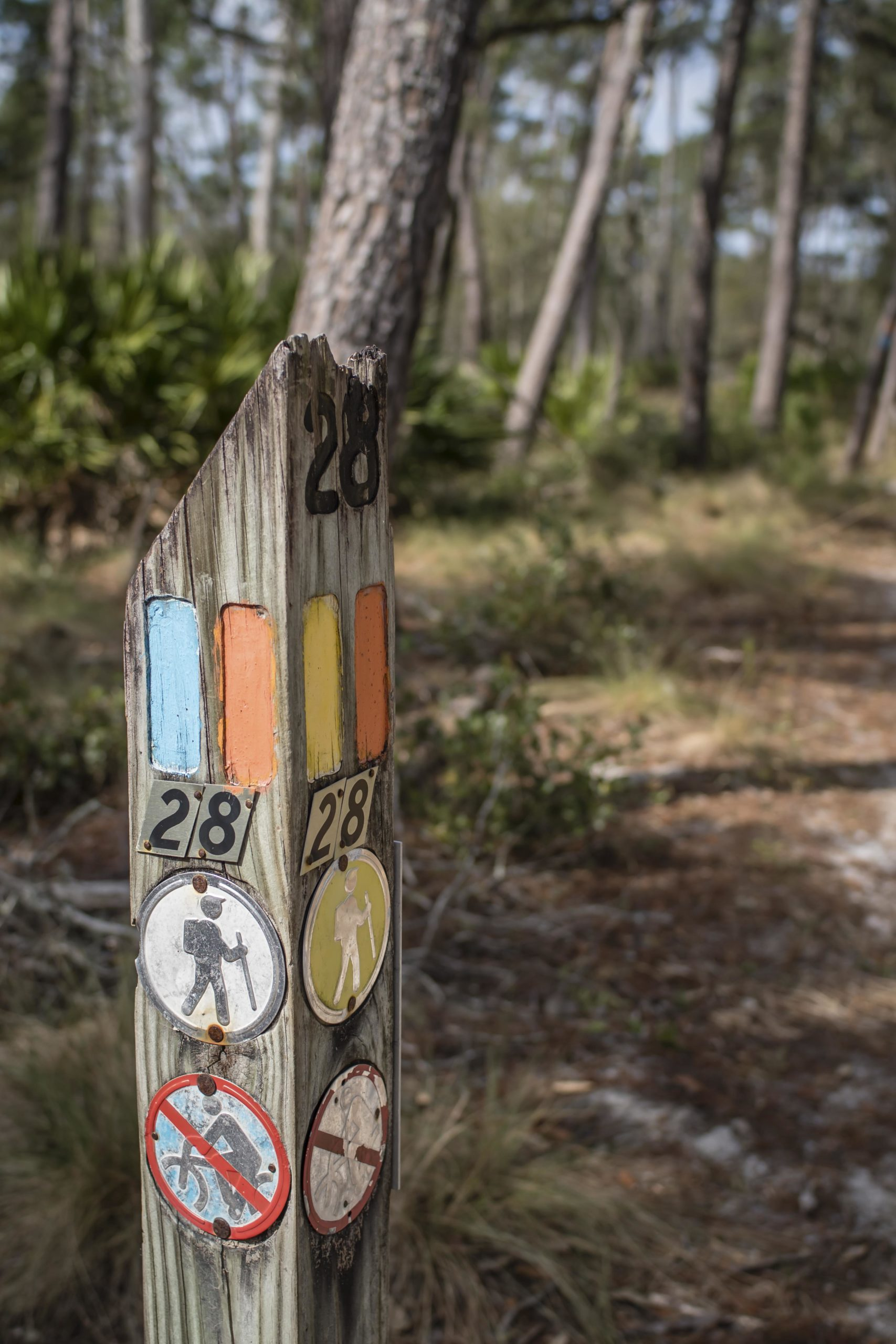 florida trail markers