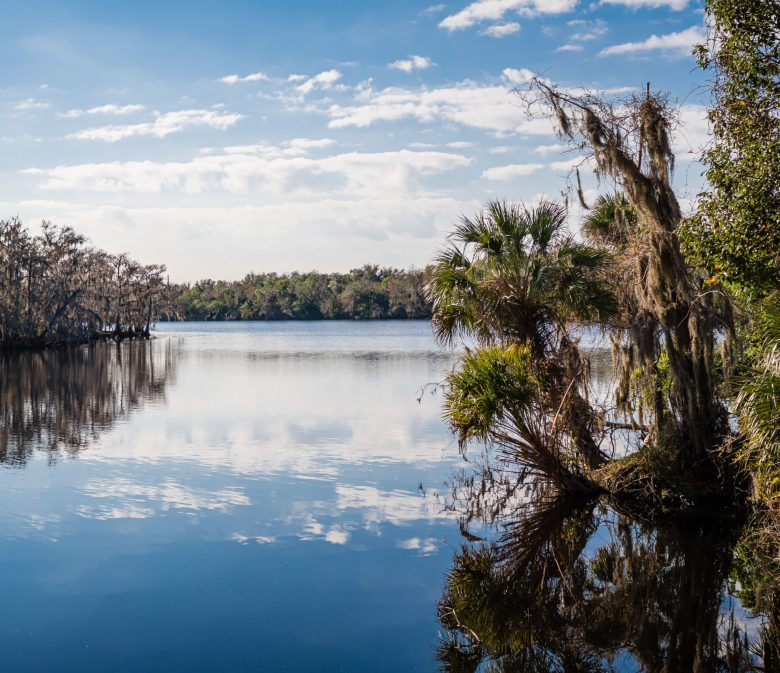 St John's River at Black Bear Wilderness