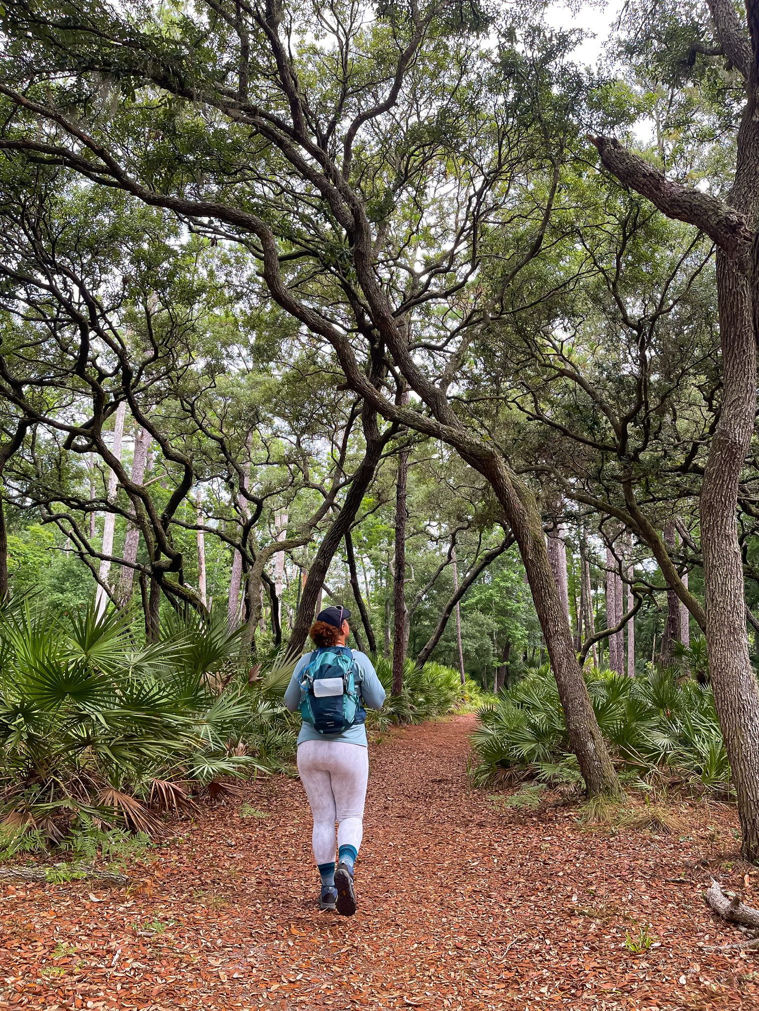 woman solo hiking on wekiva springs trails