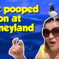 Embarassing Disneyland Moment