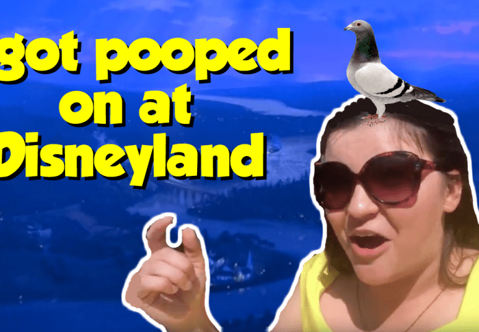 I Got Pooped on at Disneyland!