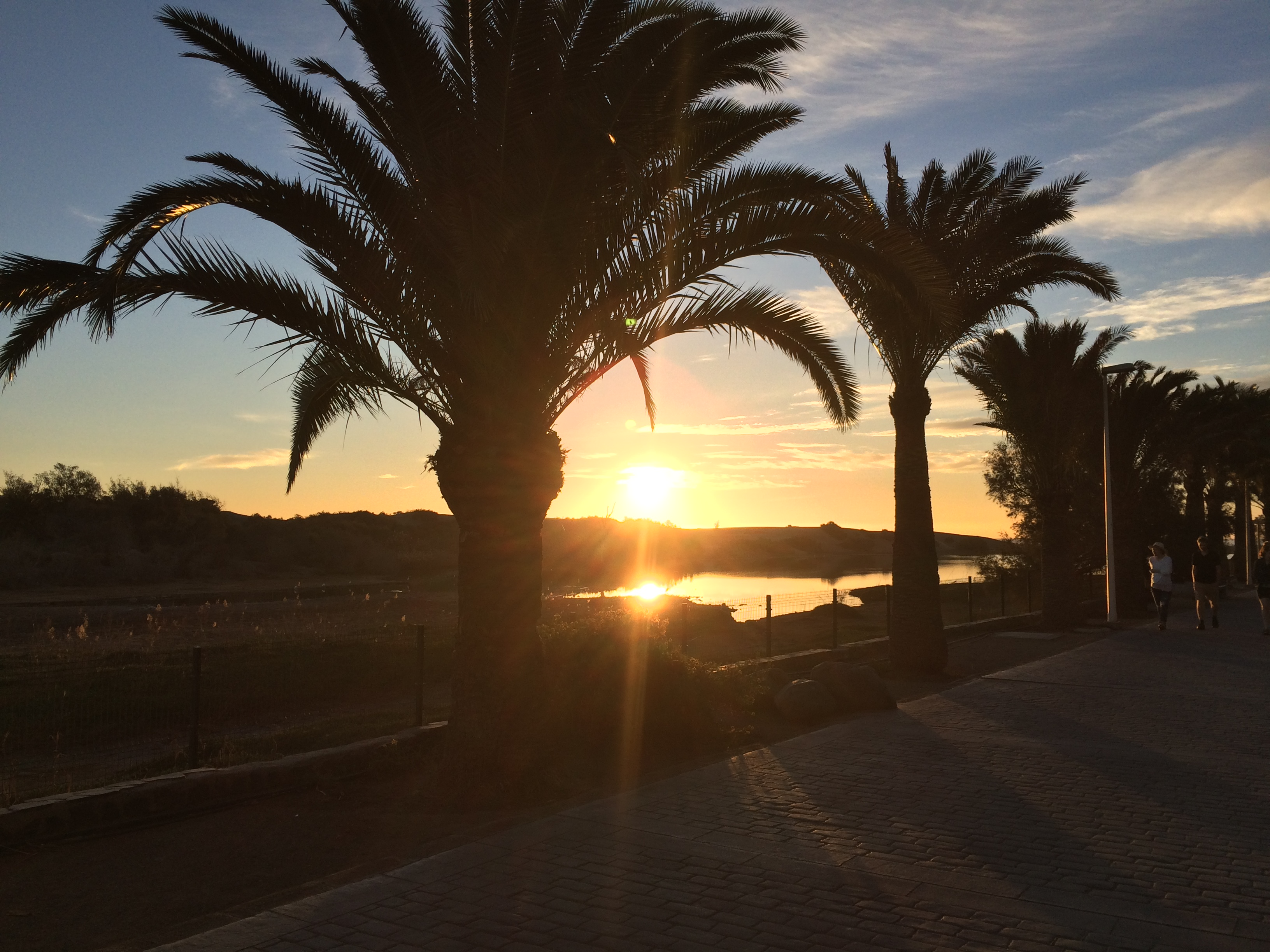 Top 5 things to do in Gran Canaria: Maspalomas Dunes