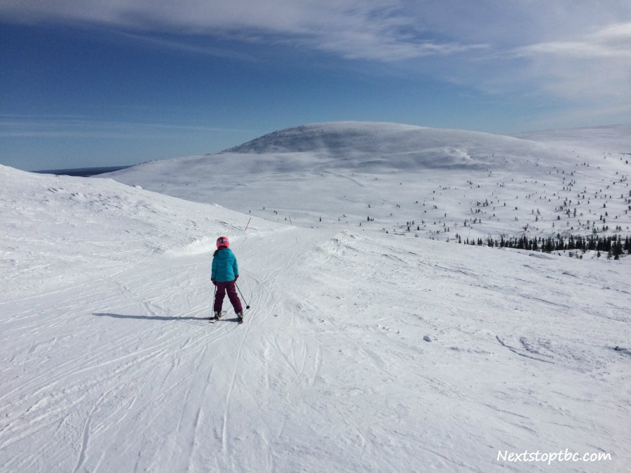 Top 5 Tips to Skiing with Kids in Pallas National Park, Lapland