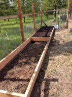 Asparagus bed being built