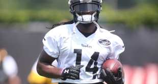 USATSI_10107176_168383805_lowres TRADE: Steelers Trade WR Sammie Coates To Browns For 2018 6th-Rd Pick