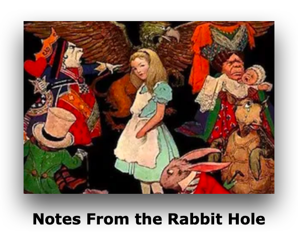 Notes From the Rabbit Hole