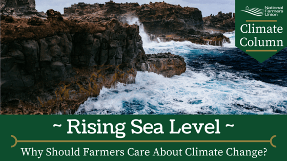 Climate Column - Rising Sea Level