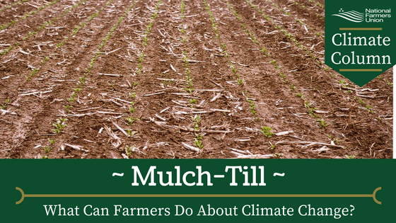 What Can Farmers Do About Climate Change Mulch Till National