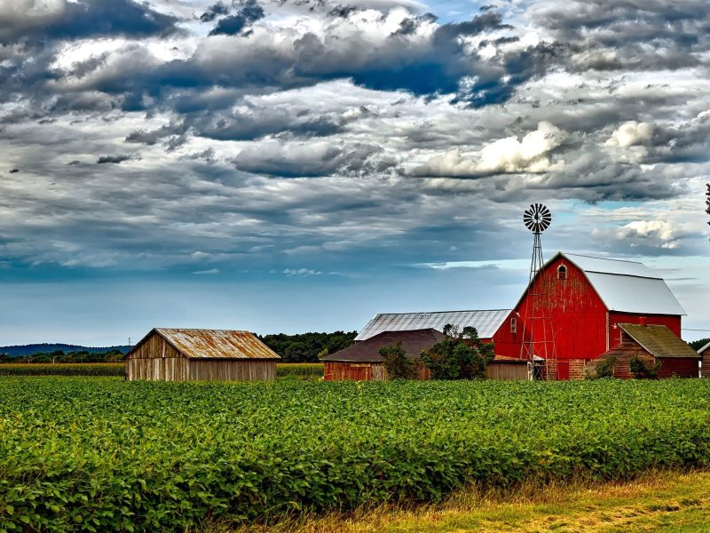 Access to Land: Buying Land as a First-Generation Producer