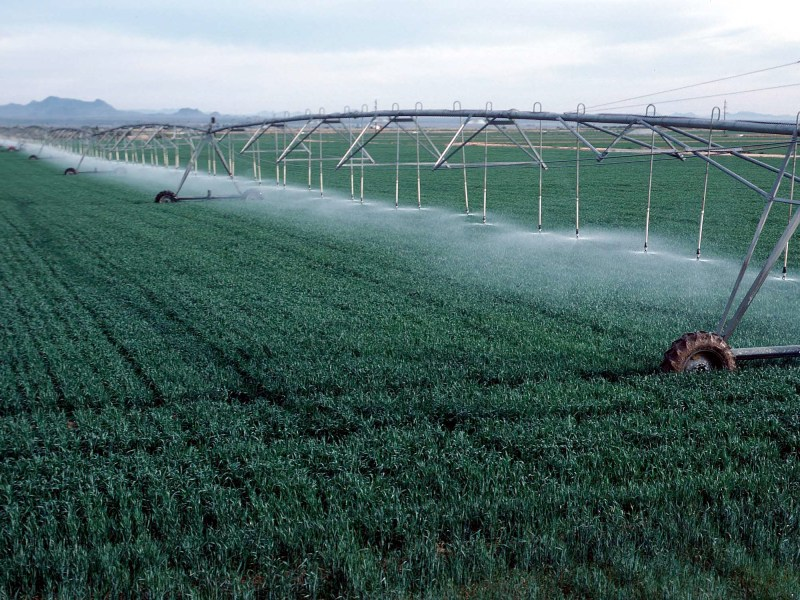 What Should Farmers Know About Climate Change? Irrigation Water Management