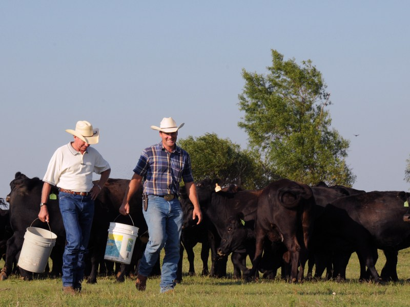 Farmers Are Worse Off Due to Unchecked Corporate Power, NFU's Larew Tells Senate Judiciary Committee