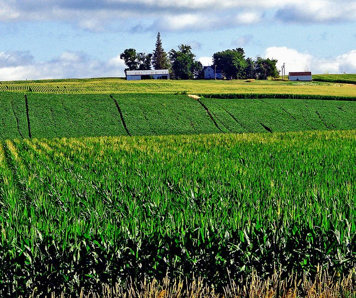 NFU Urges Administration to Honor Commitment to Biofuels