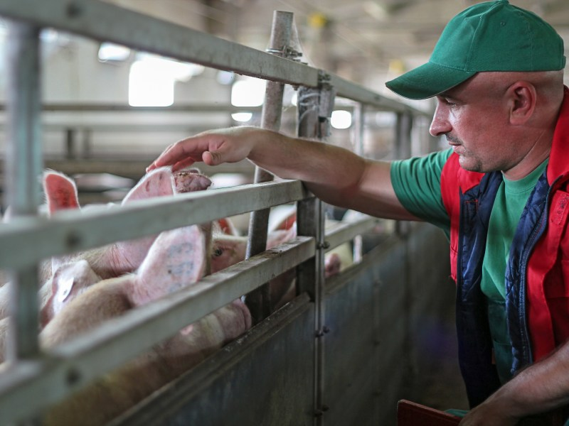USDA to Send Trade Relief to JBS, Brazil's Largest Meatpacker – Farmers Union Says Funds Should be Targeted to American Farmers and Ranchers