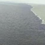 Viral Air Laut