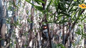 Viral Ojol Dapat Order Mistis, Motornya Nyangkut di Pohon Bambu