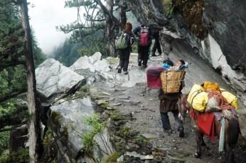 Lama Tenzin Dolpo Trek5