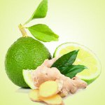 Lime Fragrance Oils- Ginger Lime Fragrance Oil