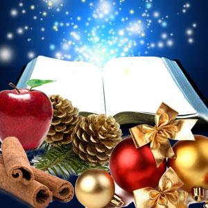 Fragrance Oils for Winter: Christmas Splendor Fragrance Oil