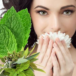 15 Designer Type Fragrance Oils Sinus Relief