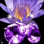 Top Exotic Fragrances: Blackened Amethyst Fragrance Oil