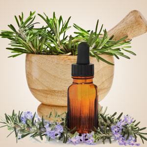 Aromatherapy Fragrance Oils: Rosemary Fragrance Oil