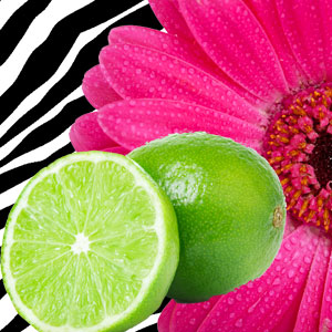 hot pink lime scent