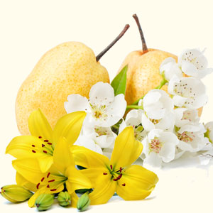 Most Popular Wedding Fragrance Oils Asian Pear and Lily Fragrance Oil