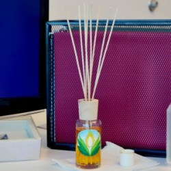 Natures Garden Reed Diffuser Kit