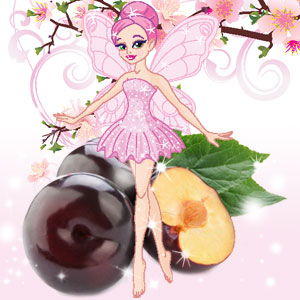 Dance of the Sugar Plum Fairy Fragrance Oil