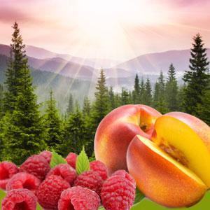 12 Peach Fragrance Oil:Georgia Sunrise Fragrance Oil