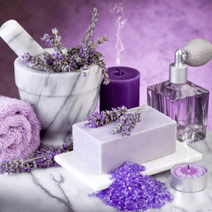 Aromatherapy Fragrance Oils: Lavender Luxury Fragrance Oil