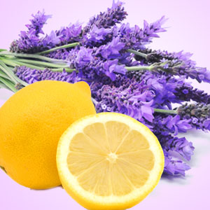 15 Fragrance Oils for Mother's Day: Lemon Lavender Fragrance Oil