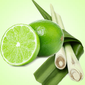 Lime Citronella Fragrance Oil