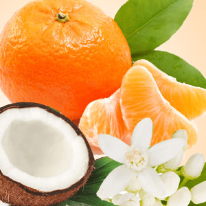 Popular Orange Fragrance Oils: Mandarin Coconut Fragrance Oil