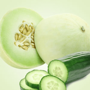 NG Cucumber Melon Type Fragrance Oil