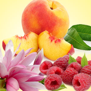 12 Peach Fragrance Oil: Peach Magnolia Raspberry Fragrance Oil
