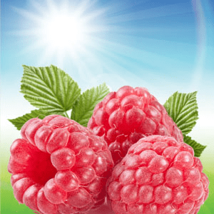 My Favorite Fragrance Oils for Lotion: Sun Ripened Raspberry Fragrance Oil