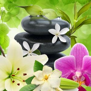 Kauai Spa Fragrance Oil