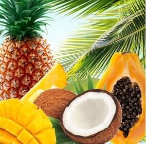 Best Coconut Fragrance Oils Tropical Blast Fragrance Oil