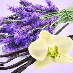 Aromatherapy Fragrance Oils: NG Vanilla Lavender Type Fragrance Oil