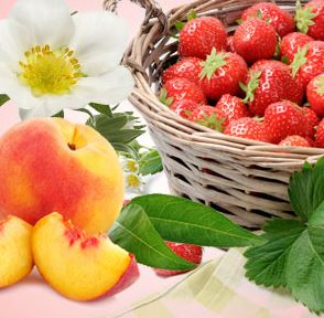 Strawberry Scented Cosmetics and Candles: Strawberry Patch Type Fragrance Oil