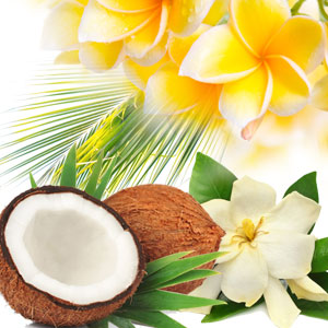 Popular Tropical Fragrance Oils: Aloha Fragrances Oils